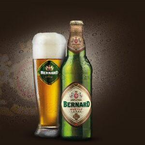 BernardLezak12